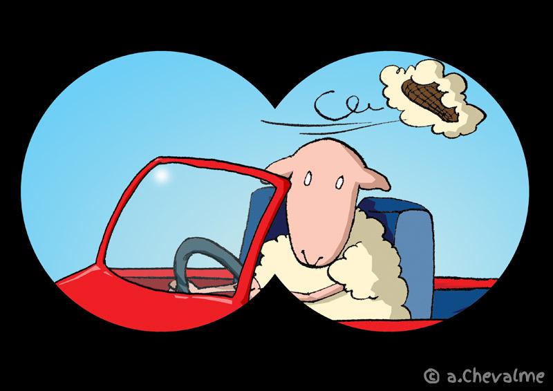 Mouton flashé sans moumoute